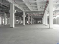 招租 城东 昆嘉路附近36000平米独院 1一3层 高标准物流厂房仓库丙类可分租