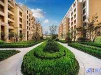 一手清退房源:超高得房率,中环豪宅,统一精装修,比的就是速度。