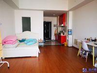 出租财富湾2期1室1厅1卫50平米1350元/月住宅
