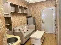 上海11号线智慧城 朝南公寓 33万 家电家具全送