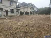 泰泓花园,新出独栋别墅,占地2亩,土建80万,5个朝南卧室,临河,花园占地1亩