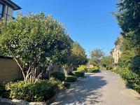 昆山占地一亩,花园140平,双拼别墅纯一手房,无税费,实景现房,所看皆所得。
