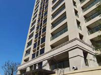 新力中央公园 娄江重点学区 诚心出售 刚交房一手新房 万象汇斜对面