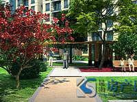 城西二中实小学区可用 满2年 小户型优质房源 房东诚心出售 看房方便