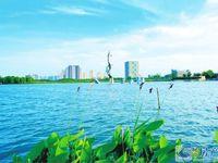 二中学区可用森林公园北门口高端新小区首付230万