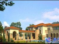 保真房源时代御湖类独栋别墅560平米绿城物业送地下室150平米花园1500平米