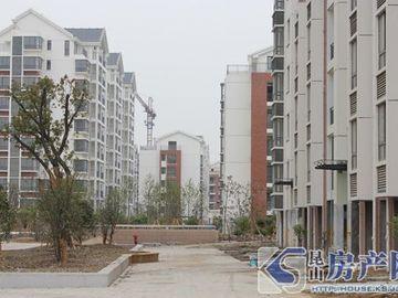 昆城博奥苑实景图
