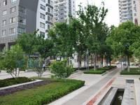 天地华城 可以分租 精装办公楼 位置好 停车方便 周边环境好 商业配套成熟