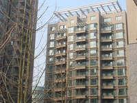 去名额急售泰和苑3室2厅2卫143.95平住宅